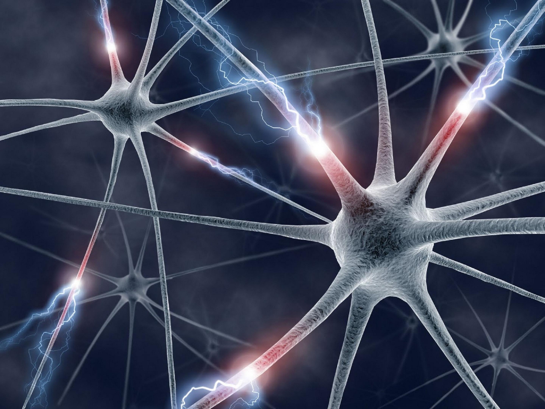 neurologie-groot1